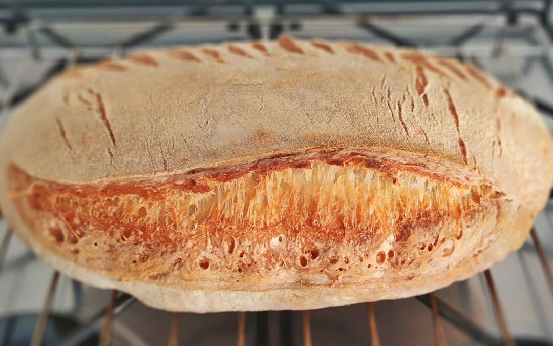 Il pane di Casa Felicidad Alguer