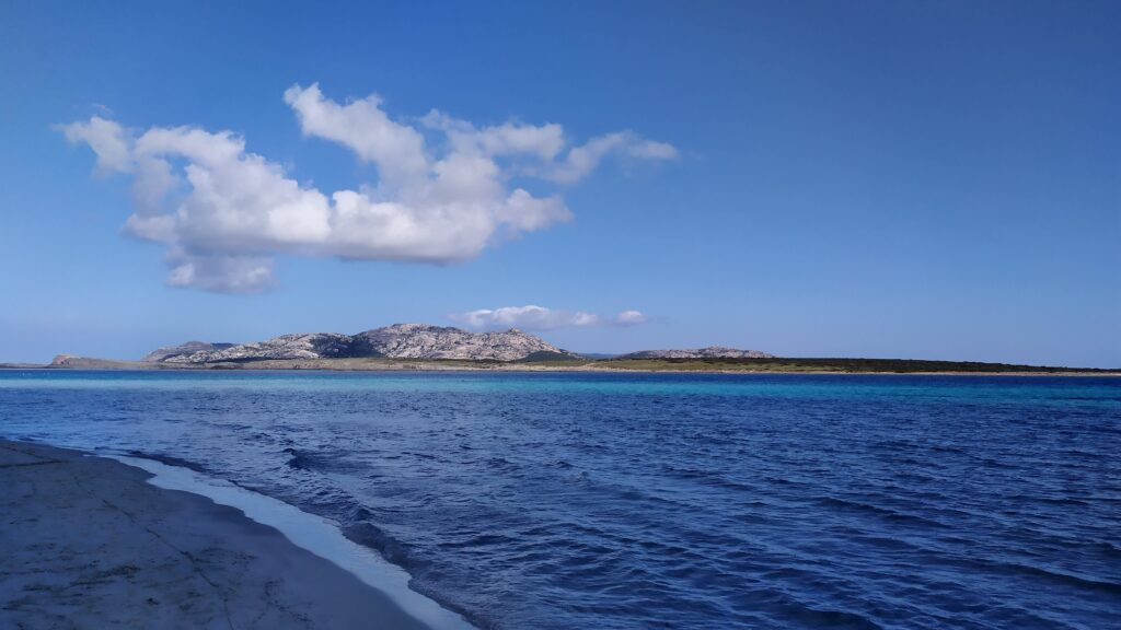l'isolotto di fronte alla spiaggia della pelosa