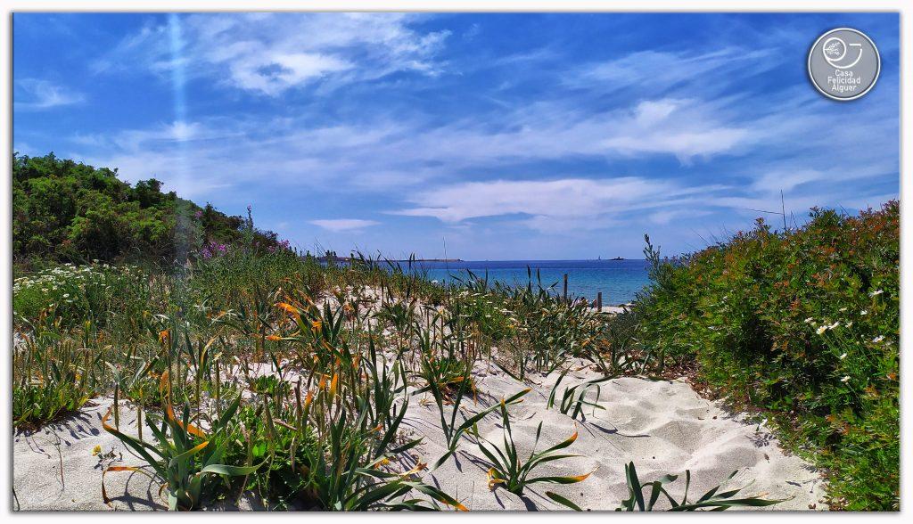 la sabbia bianca ed il mare turchese di Alghero