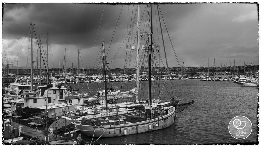 il porto e le sue barche
